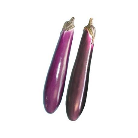 Eggplant - Chinese