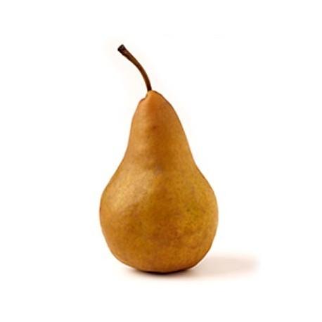 Organic Pear - Bosc